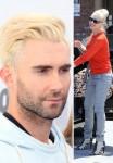 Adam Levine / Gwen Stefani