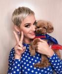 Katy Perry su Nugget